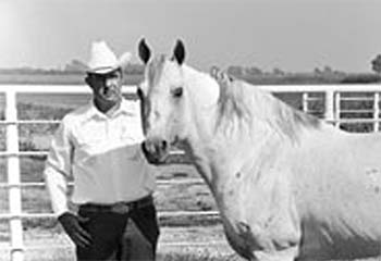 Jackie Bee Quarter Horse Legend